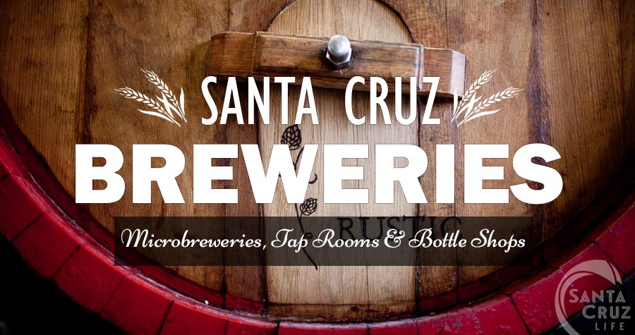santa-cruz-brewery-breakdown (1).jpg
